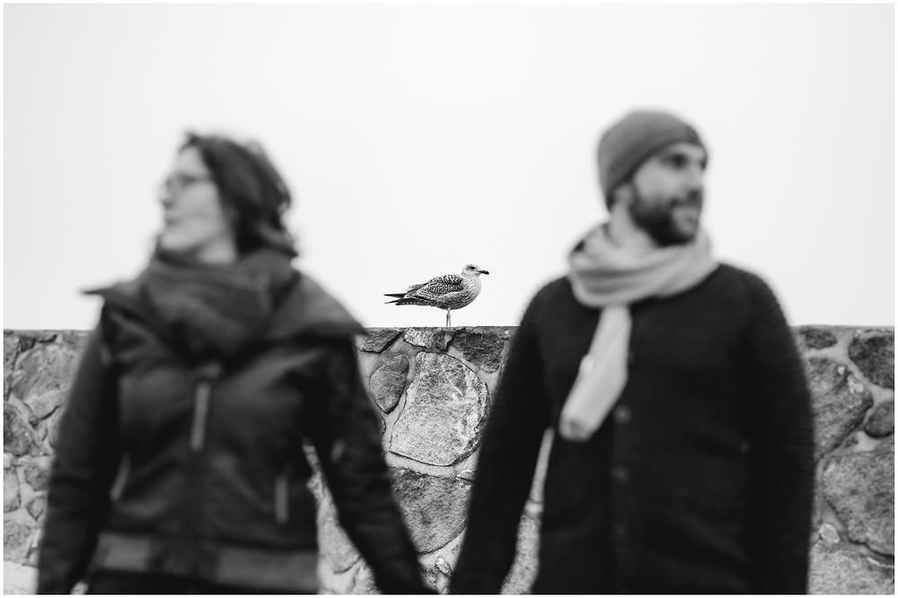portraitfoto-im-vordergrund-ein-paar-unscharf-hand-in-hand-im-scharf-im-hintergrund-eine-moewe-fotoshooting-am-strand-paerchenbilder-fotograf-warnemuende-fotograf-rostock
