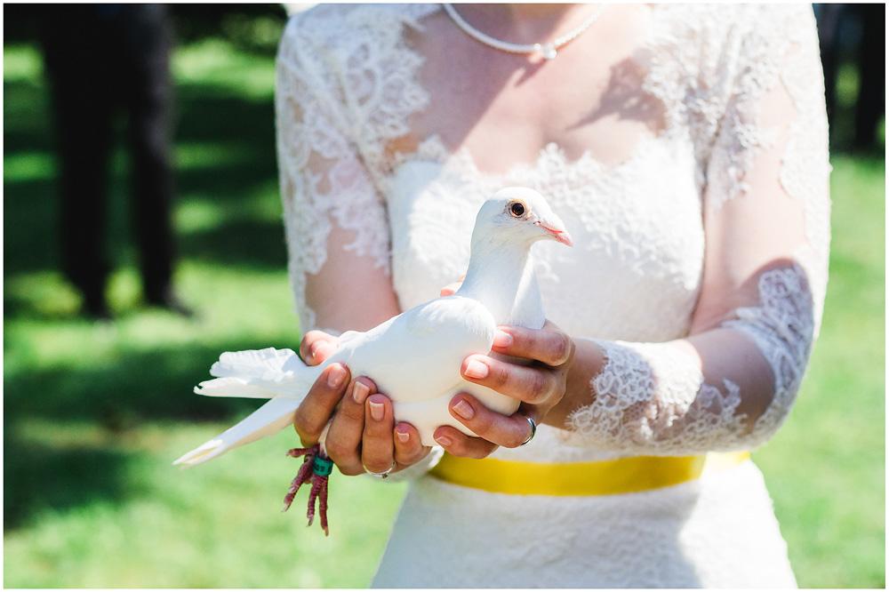 freie Trauung Taube_in_Hand_der_Braut_Hochzeitsfotograf_Ruegen_Rostock_Richterfotografie_Hochzeitsfotografie auf Rügen