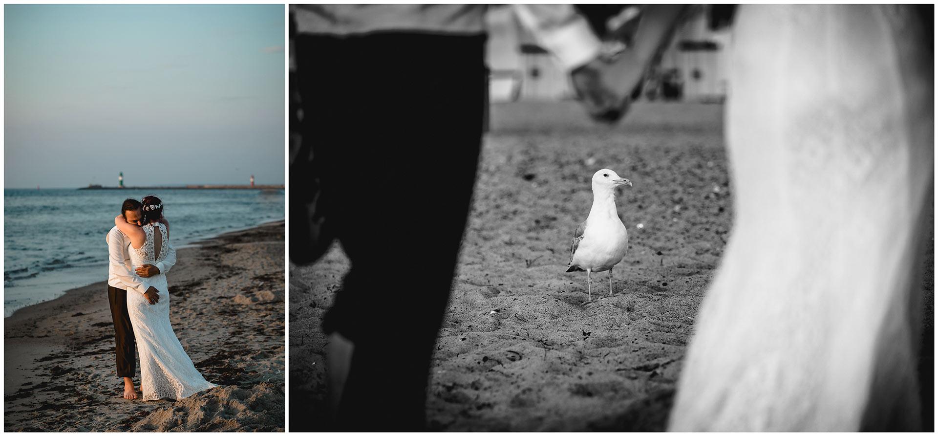 Bild-1_Brautpaar-arm-in-arm-am-Ostseestrand-Bild-2_eine-Moewe-am-Ostseestrand-Hochzeitsfotografie-Hochzeitsfotograf-Warnemuende-Hochzeitsfotograf-Rostock-Hochzeitsfotograf-Ostseebad-Warnemuende