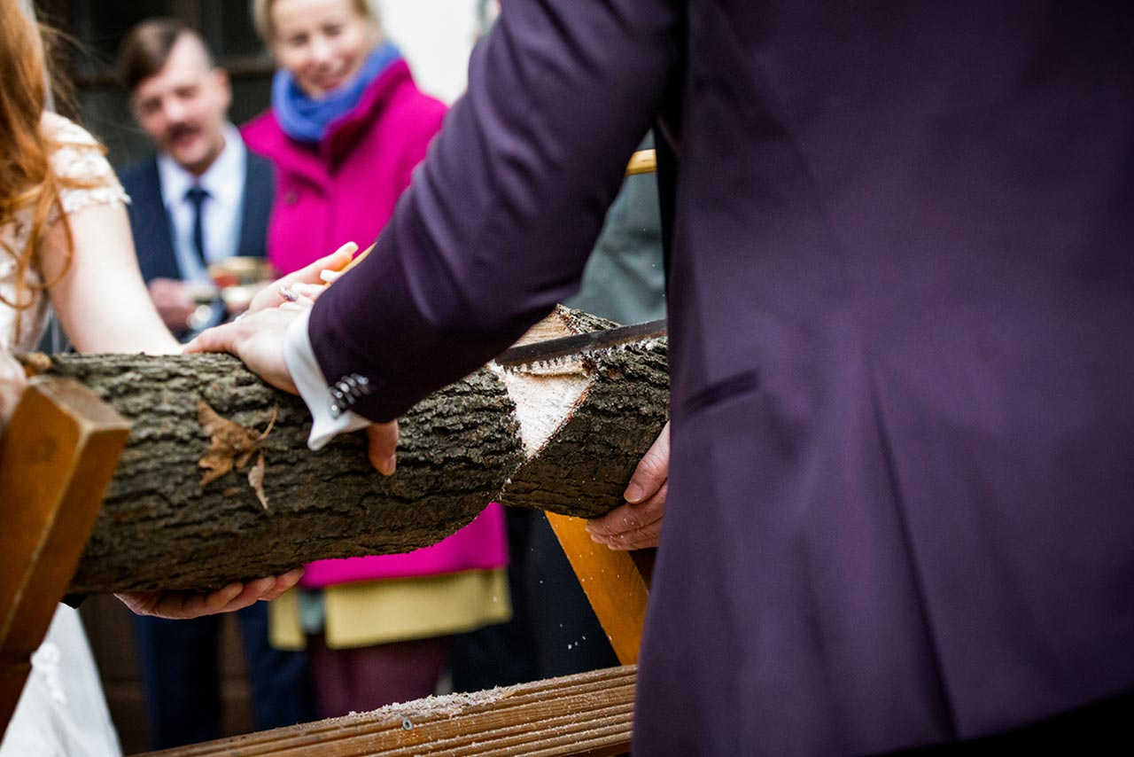 Nahaufnahme durchgesägter Baumstamm - Hochzeitsfotograf