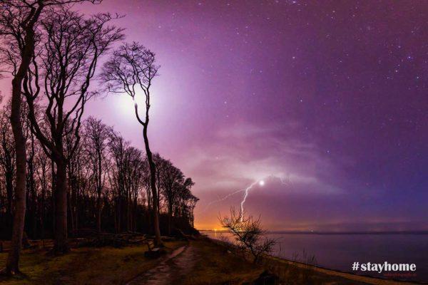 #stayhome - Gespensterwald Nienhagen - Nachtaufnahme - Fotograf Rostock - Landschaftsfotos zum Download